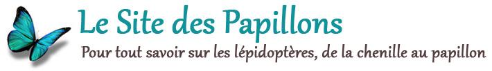 Le Site des Papillons Logo